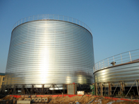 Rice silo for grain storage